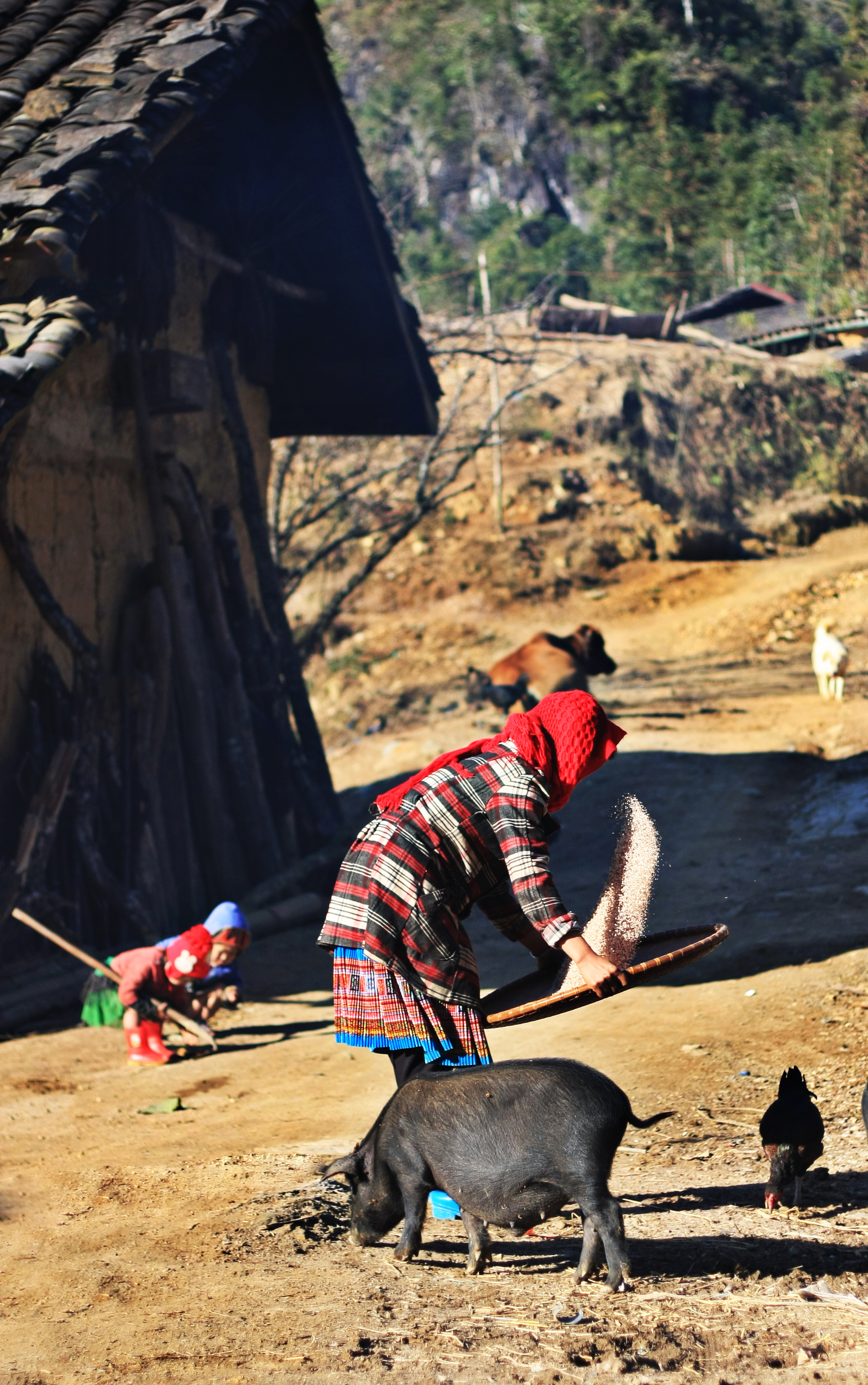 Pull out your weenie and jerk off to this